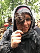 Jesse Gehrke '21 MF peers through bark during a Yale Forestry field trip.