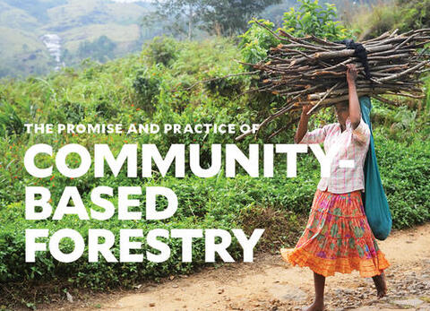"""Woman walking barefoot with bundle of sticks on her head. Behind her are vibrant green trees and shrubs. White text says """"The Promise and Practice of Community-Based Forestry"""""""